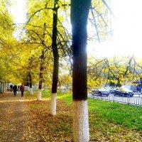 Осенний город :: Алексей Килимник
