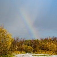 первый снег и радуга :: Елена Кордумова