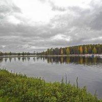 Страна Suomi. Озеро Сайма. :: Лариса (Phinikia) Двойникова