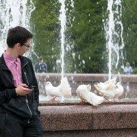 SMS и голуби :: VL