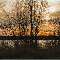 Краски вечернего неба над рекой Онега. :: Марина Никулина