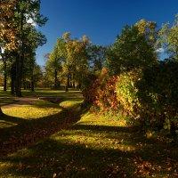 Краски уходящей осени :: Болеслав (Boleslav)