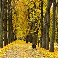 В старом парке царствовала осень. :: Тамара Бучарская