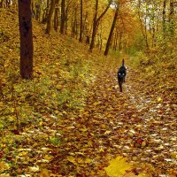 Прогулка в Осень. :: Тамара Бучарская