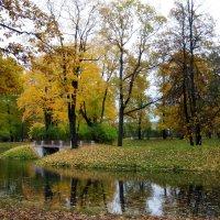 Осень в Александровском парке :: Наталия Короткова