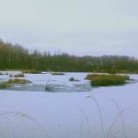 преддверие.....зимы :: александр дмитриев