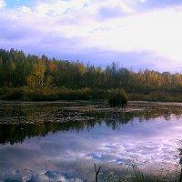 уж небо осенью дышало... :: александр дмитриев