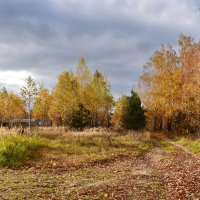 В  деревне  осень. :: Валера39 Василевский.