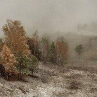 С зимою осень повстречалась. :: Марина Фомина.