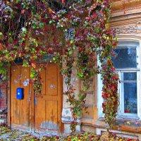 Осенний город :: наталия