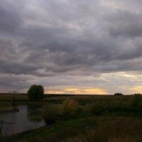 Серый день короче ночи ... :: Евгений Юрков