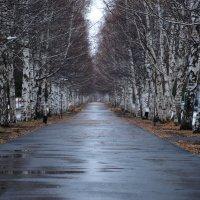 просто осень... :: Alexandr Staroverov