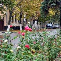 Осенний город :: Владимир Болдырев