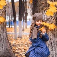 Осенняя пора :: Ольга Геращенкова