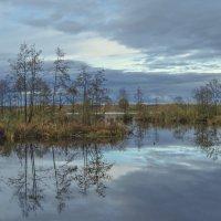 На Якушовском озере :: Сергей Цветков