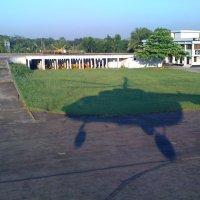 shadow :: Renatas Strimaitis