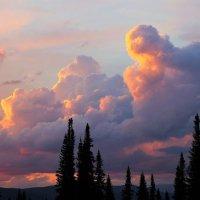 Вечерние облака :: Сергей Чиняев
