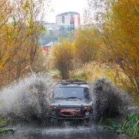 Осенний душ джипера :: Денис Сидельников