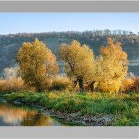 золотая осень. :: олег кирюшкин