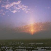 Луч солнца золотого :: Светлана Коротких