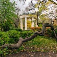 Екатерингофский парк :: Alexandra G.