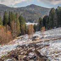 В горах Алтая :: Андрей Поляков