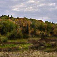 Глухая старица. A dense river :: Юрий Воронов
