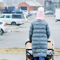 Мамочка с помпон (чиками) :: юрий Амосов