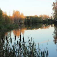 Озеро :: Ольга Анянова