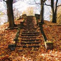 Осенняя лестница :: Александр Михайлов