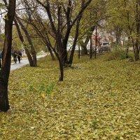 Октябрь :: Олег Афанасьевич Сергеев
