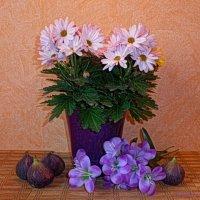 Инжир и хризантемы :: Nina Yudicheva