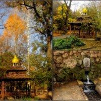 Святой источник в Кисловодском курортном парке :: Нина Бутко