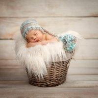 Новорожденный гномик. :: Elena Klimova