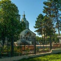 Свято-Никольский кафедральный собор г.Армавир. :: Игорь Сикорский