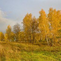 Золотая осень :: Константин