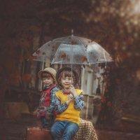 Осень. :: Наталья Борисова