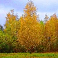 Золото октября :: Маргарита Батырева