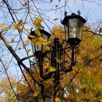 Фонари и осень :: Нина Бутко