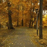 Осень в старом парке :: Юрий Кузнецов