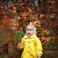 осень :: Алёна Дуклер