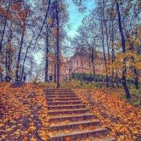 Лестница в осень! :: Натали Пам