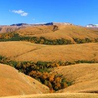 Это осень, кавказская осень... Эшкаконское ущелье. Вид на Бермамыт. :: Vladimir 070549