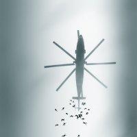 Ныряльщики 5 океана :: Дмитрий Бубер