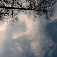 Ему сверху видно всё , ты так и знай ! :: Мила Бовкун