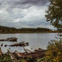 Озеро Переламбино,на рыбалке :: Ольга Нежикова