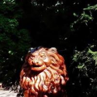 Красный китайский лев :: Владимир Бровко