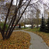 Глубокая осень почти не цветная :: Андрей Лукьянов