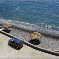 Madeira, Camara de Lobos :: Jossif Braschinsky