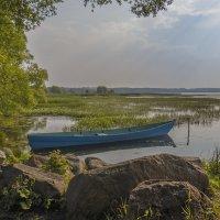 На Плещеевом озере :: Сергей Цветков